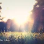 Stimme der Wassermannzeit – Die Liebe der Schöpfung (CN)